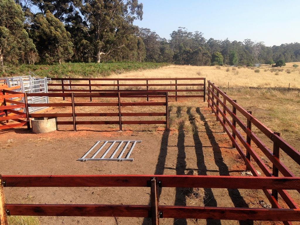 Cattle Yard Railing